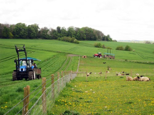 Motor specialist ERS farms in claims team for agriculture business