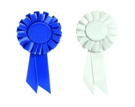 Become an award-winning HR pro