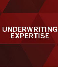 Underwriting Expertise