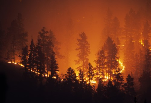 Northwest residents' concern about wildfires on the rise - PEMCO