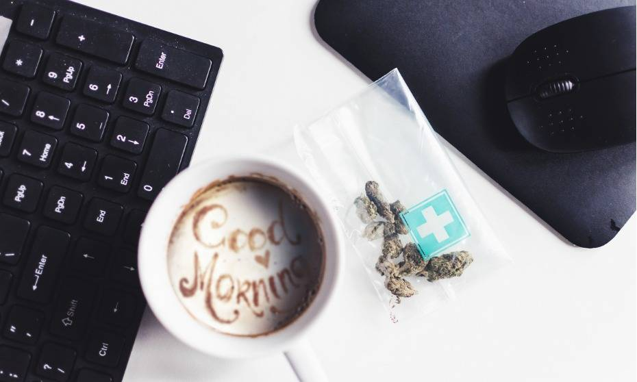 Marijuana in the workplace: everything you need to know