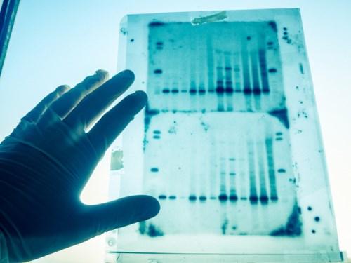 HSBC Insurance unveils innovative DNA partnership