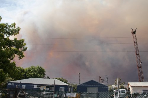 ICA declares bushfire catastrophe