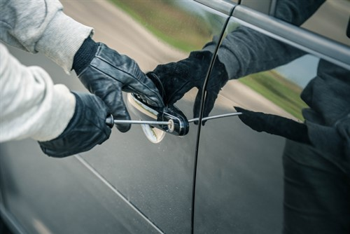 Edmonton branded as hot spot of vehicle theft