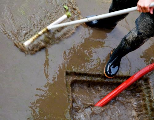 Windsor denies sewage backup claims for over 1,600 homes