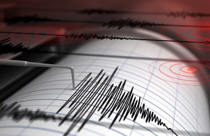 Survey on early earthquake warning for NZ