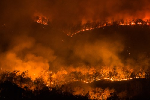 Sir Ivan fires declared a disaster to raise relief funds
