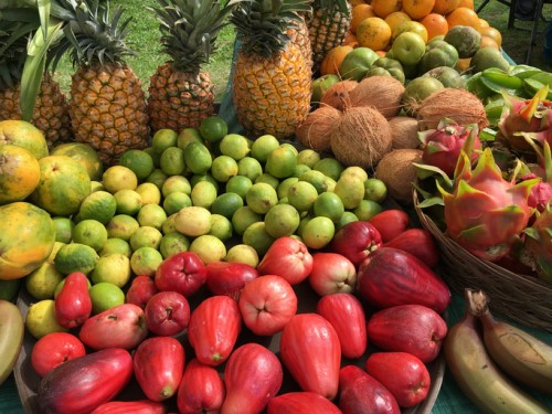 Insuring Hawaiian crops is about much more than pineapples