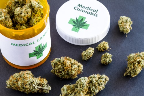 Firm introduces first guaranteed issue insurance product covering medical cannabis