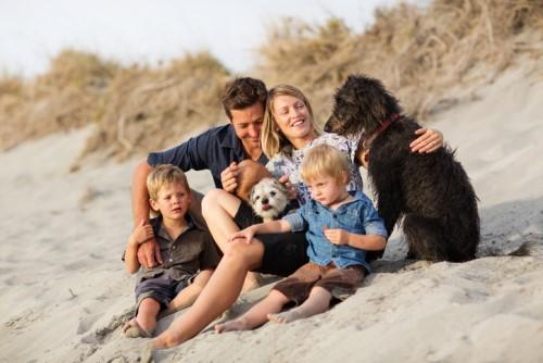 Australians spend $12 billion a year on pets