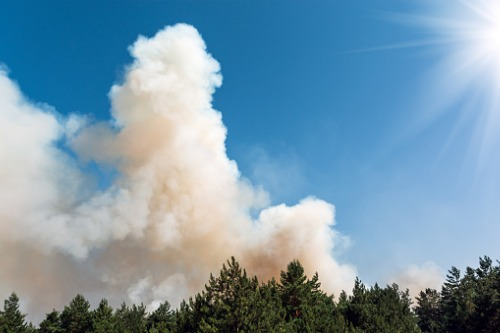 Wildfire risk doesn't cloud desire for homes says study