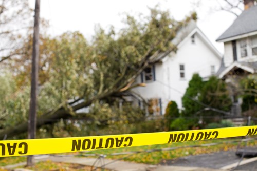 $5 million storm damage cost just a start