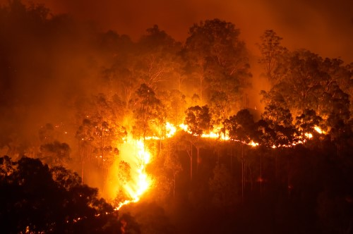 Fitch: Wildfires won't be enough to downgrade reinsurers alone