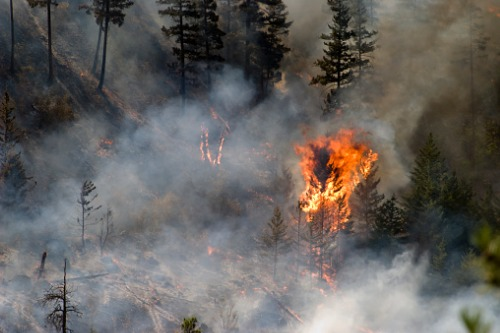 As wildfires break records what can agents do?