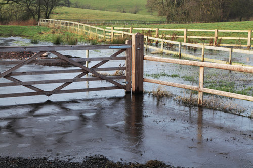 John Noone of H&H Insurance Brokers on hand to help flood-hit farmers