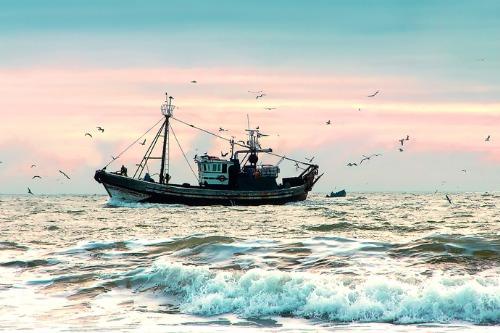 TSB slams fishing industry following deadliest year in a decade
