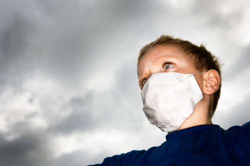 The price of public health: Assessing epidemic risk management