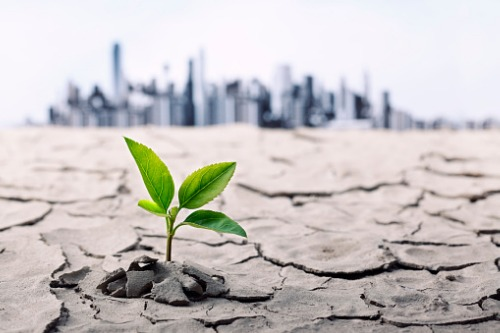 Insurers will manage, survive climate change risks – expert