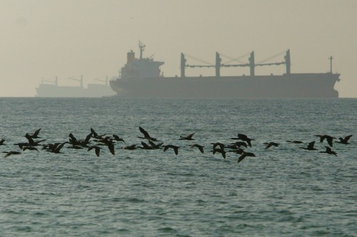 Gulf tensions are impacting marine insurance rates … but by how much?