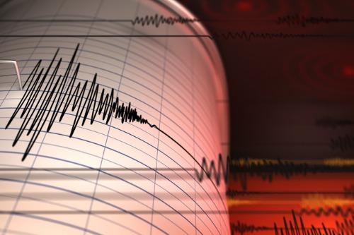 Kiwis back earthquake early warning system idea