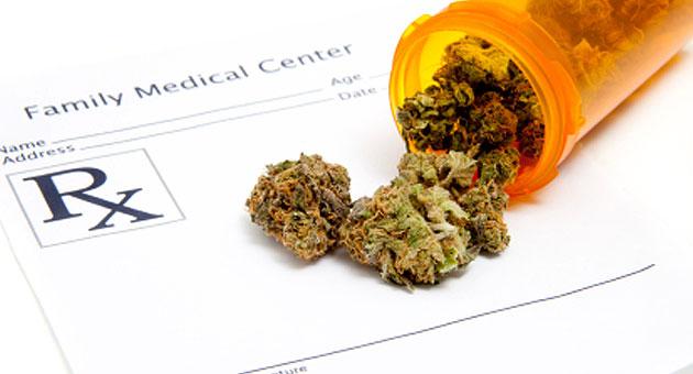 Marijuana insurance industry growing like weeds