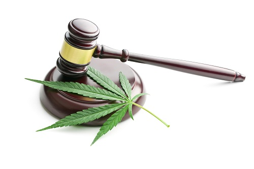 How Brokers Can Capitalize on Cannabis Regulations