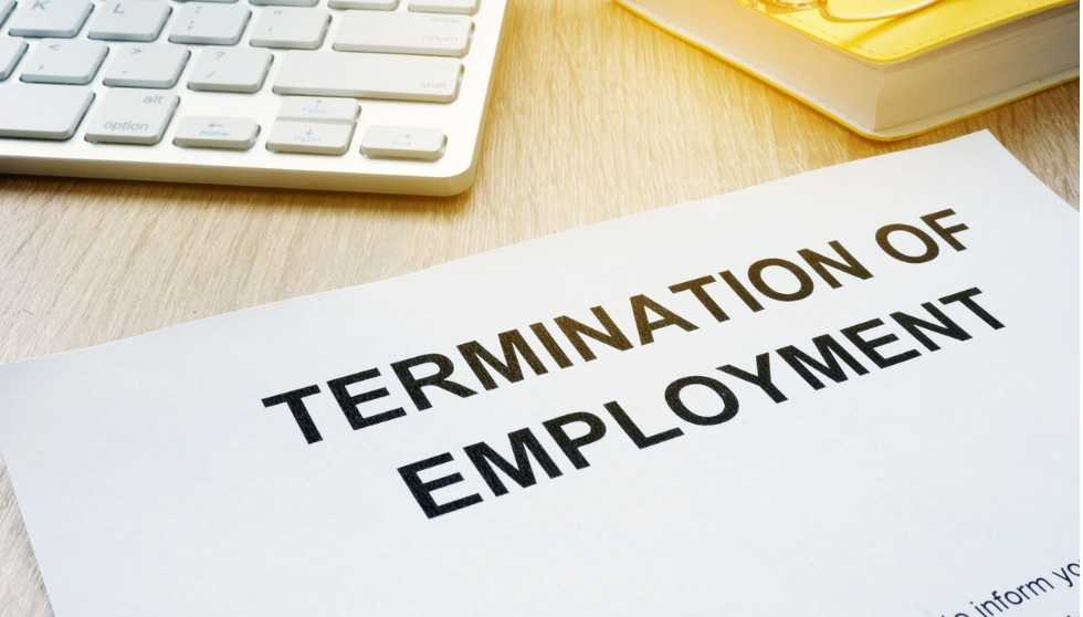 Employees terminated without redundancy, shown jobs in NZ